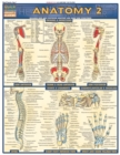 Image for Anatomy 2 - Reference Guide (8.5 x 11) : a QuickStudy Reference Tool