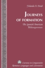 Image for Journeys of formation  : the Spanish American Bildungsroman