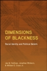 Image for Dimensions of Blackness: Racial Identity and Political Beliefs