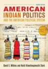 Image for American Indian politics and the American political system