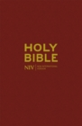 Image for Holy Bible  : New International Version