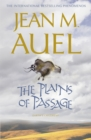 Image for The plains of passage