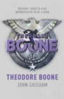 Image for Theodore Boone