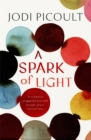Image for A Spark of Light : THE NUMBER ONE SUNDAY TIMES BESTSELLER