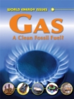 Image for Gas  : the clean fossil fuel?