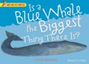 Image for Is a blue whale the biggest thing there is?