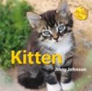 Image for Kitten