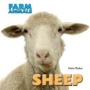 Image for Sheep