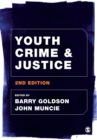 Image for Youth crime and justice