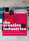 Image for Introducing the creative industries: from theory to practice