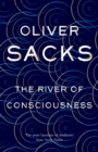 Image for The river of consciousness