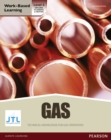 Image for NVQ level 3 diploma gas pathway candidate handbook