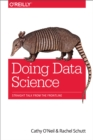 Image for Doing data science