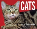 Image for Cats 2018 Mini Day-to-Day Calendar