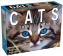 Image for Cats 2019 Mini Day-to-Day Calendar