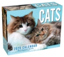 Image for Cats 2020 Mini Day-to-Day Calendar