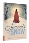 Image for Secrets in the snow  : a novel of romance and intrigue