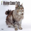 Image for Maine Coon Cats 2018 Wall Calendar