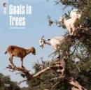 Image for Goats in Trees 2018 Wall Calendar