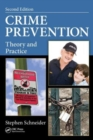 Image for Crime prevention  : theory and practice
