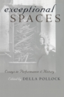 Image for Exceptional Spaces: Essays in Performance and History