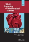 Image for What's happening in the mathematical sciencesVolume 10