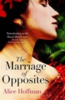 Image for The marriage of opposites