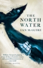 Image for The north water