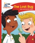 Image for The lost bug