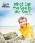 Image for What can you see by the sea?