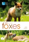 Image for Foxes