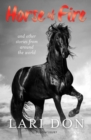 Image for Horse of fire  : horse stories from around the world