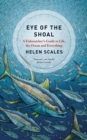 Image for Eye of the shoal  : a fish-watcher's guide to life, the ocean and everything