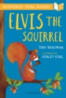Image for Elvis the squirrel