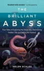 Image for The brilliant abyss  : True tales of exploring the deep sea, discovering hidden life and selling the seabed