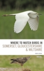 Image for Where to watch birds in Somerset, Gloucestershire and Wiltshire