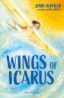 Image for Wings of Icarus