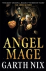 Image for Angel mage
