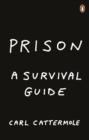 Image for Prison: a survival guide