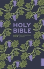 Image for The Holy Bible  : New International Version
