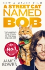 Image for A street cat named Bob