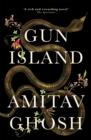 Image for Gun island