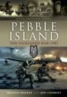 Image for Pebble Island: Operation Prelim