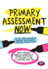 Image for Primary assessment now  : the why, what and how of formative and summative assessment without levels