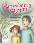 Image for Strawberry Storm
