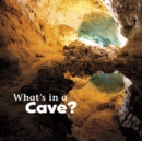 Image for What's in a cave?