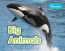 Image for Big animals