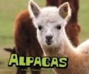 Image for Alpacas