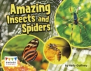 Image for Amazing insects and spiders