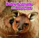 Image for Baby animals in pouches